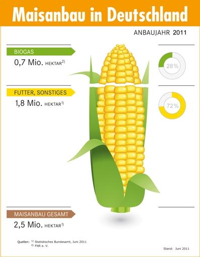Maisanbau im Jahr 2011, Quelle: FNR