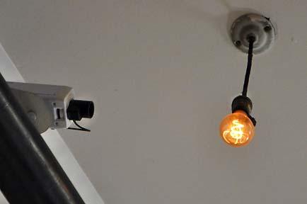 """Die """"Bulbcam"""" sendet alle 30 Sekunden Livebilder der """"Centennial Bulb"""""""