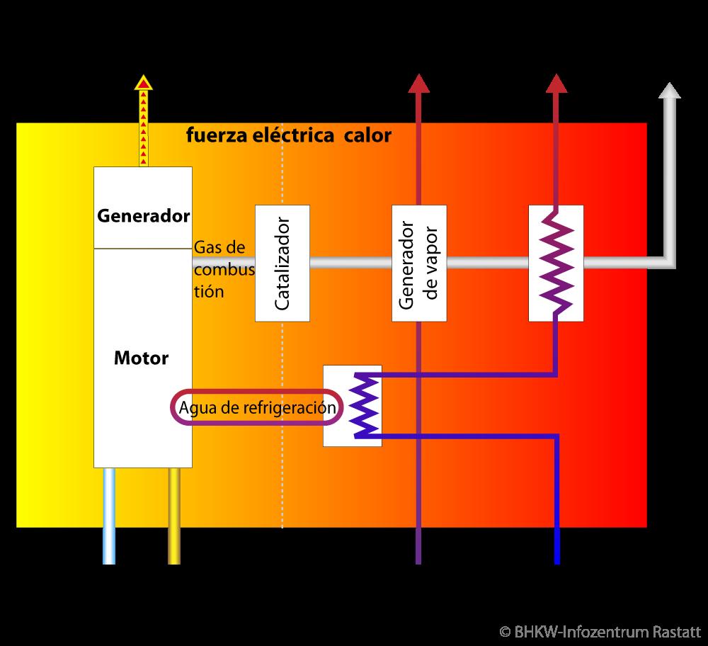 Principio de la cogeneración - das KWK-Prinzip als Blockschaltbild (Bildquelle: BHKW-Infozentrum)