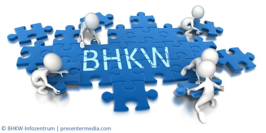 BHKW und KWK sind auch Themenfelder, die auf den sozialen Netzen wie XING präsent sein sollten. Das BHKW-Infozentrum hat daher eine