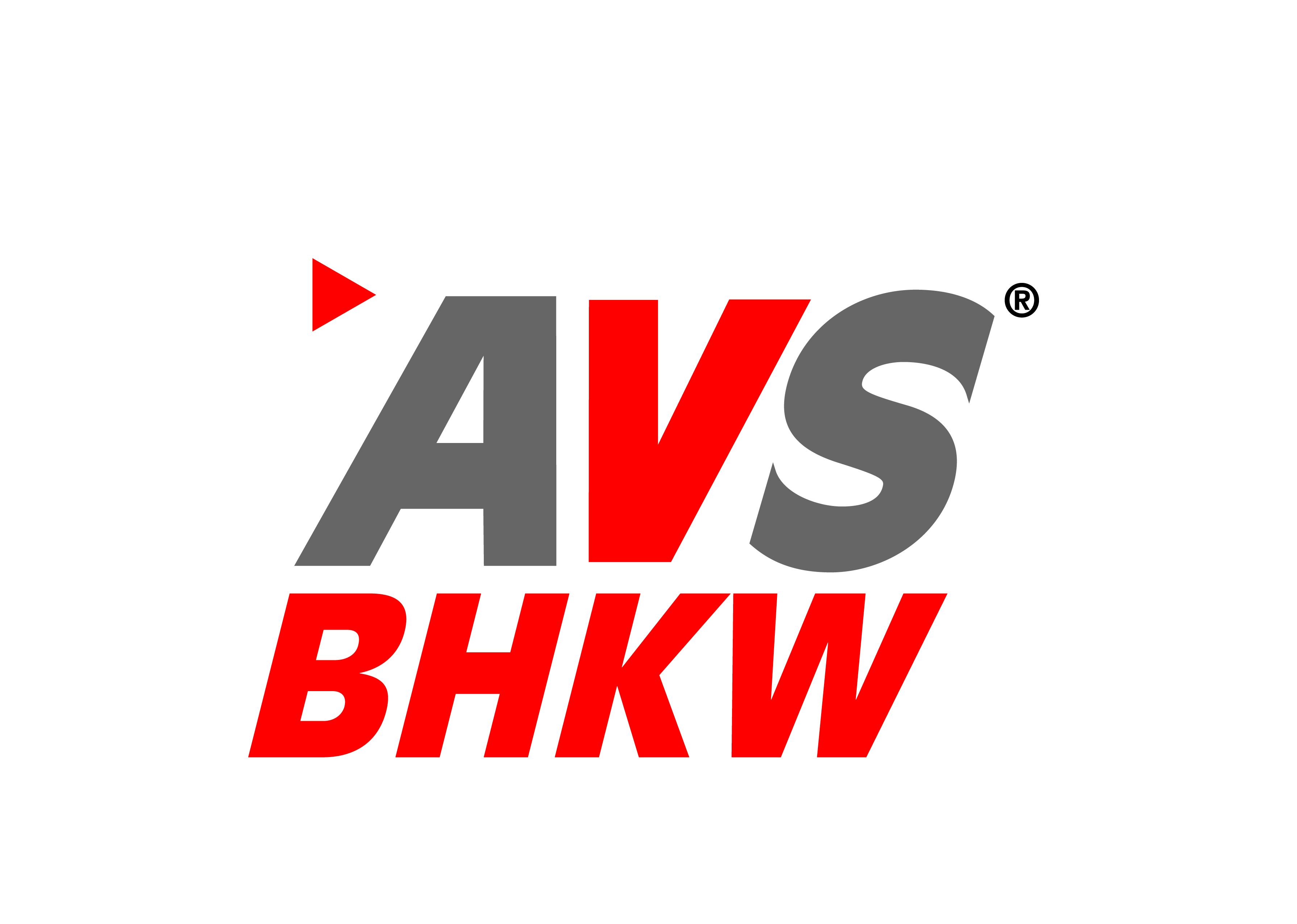 Internetseite der AVS GmbH