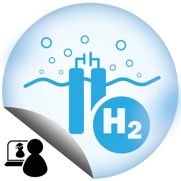 Wasserstoff – Importieren oder selbst machen?